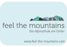 Feel the Mountains